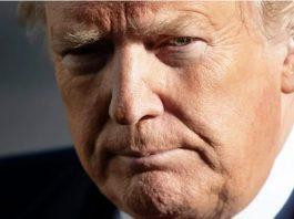 trump plotting revenge schiff impeachment enemies